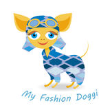 My fashion doggy royalty free stock images