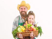 My father is farmer. Family farm organic vegetables. Man bearded rustic farmer with kid. Farmer family homegrown harvest stock images