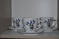 My favourite lavender collection royalty free stock photo