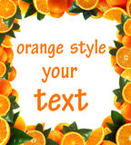 My favourite oranges Royalty Free Stock Image