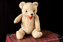 My first teddy bear Stock Images