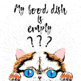 My food dish is empty, hand drawn card and lettering calligraphy motivational quote for cat lovers. Typographic design. Cute, friendly, smiling, inspirational Royalty Free Stock Images