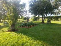 My Garden Stock Photos