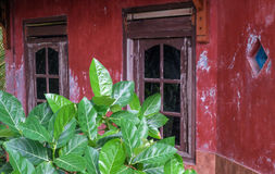 My granny`s house - rural life in the tropic Stock Photography