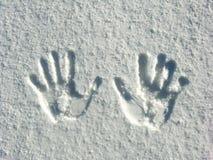 My Hands Stock Photo