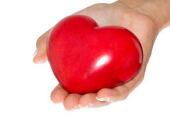 My heart. Red, shiny heart in female hands Royalty Free Stock Image