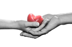 My heart for you! Royalty Free Stock Images