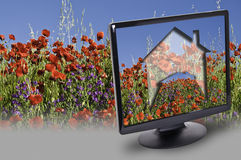 My home. This image shows the location of a house in a field of poppies, viewed through a computer screen Stock Images