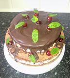 My homemade cake stock image
