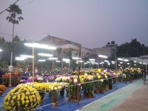 My hometown balurghat magical moment of flower fair stock photos