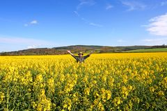 My Lands. Celebration of a Good and Beautiful Canola Crop, taken on a wide Angle Lens in Northumbeland, England stock photo