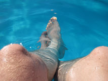 My legs in blue sea Royalty Free Stock Photo