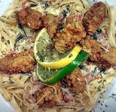 My life my creations my passion. Fried oysters w/ Rockefeller cream sauce and fettuccine Stock Images