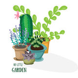 My little garden. Flat vector illustration. Succulent, cactus, lavender nd other green home plants. Royalty Free Stock Photos