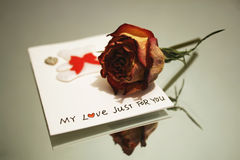 My love just for you Royalty Free Stock Photo