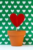 My love for you is growing, green Stock Photo