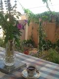 My lovel garden. My lovely quite home garden with cup of coffe Stock Image