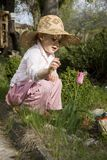 My lovely flower Stock Image
