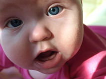 My lovely girl. Charming portrait of five month old baby royalty free stock photo