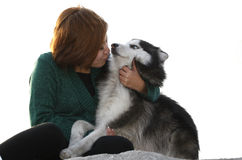 My lovely husky. A beautiful girl and her husky royalty free stock images