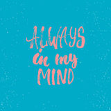 Always in my mind - lettering Valentines Day calligraphy phrase isolated on the background. Fun brush ink typography for photo ove Royalty Free Stock Photos