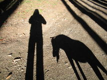 My and my dog´s shadow. A shadow of a girl and her dog Royalty Free Stock Photo