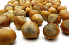 My NUTS Royalty Free Stock Photo