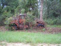 Panama City Beach My old Truck overgrown weeds royalty free stock images