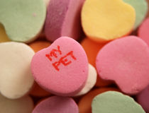 MY PET. Candy, a simple illustration of love and romance, isolated by shallow depth of field Royalty Free Stock Images