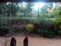 Natural site of kerala royalty free stock image