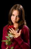 My rose Royalty Free Stock Photography