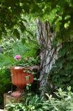 My secret garden. Hidden garden with pink geraniums Stock Images