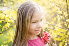 My Spring Royalty Free Stock Images