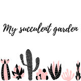 My succulent garden5 Royalty Free Stock Image