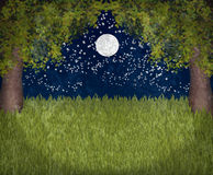 My sweet moonlight garden. A garden in moonlight two maple trees and dark sky with moon and stars Stock Images