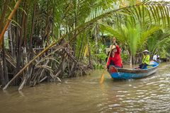 MY THO, VIETNAM - NOVEMBER 24, 2018: Mekong River Delta jungle c. Ruise with unidentified craftman and fisherman rowing boats on flooding muddy lotus field in stock photography