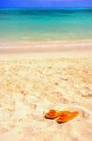 My tropical beach royalty free stock photos