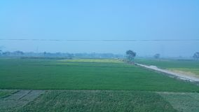 From my village. Clicked by Note 4 Royalty Free Stock Image