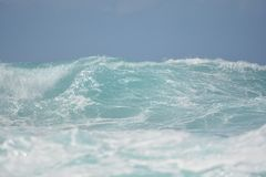 Enjoying the Beach Stock Image