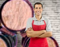 My wine cellar Royalty Free Stock Images