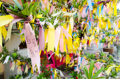 My wish. Wishing tree at the temple, one of the religious ceremony Royalty Free Stock Photography