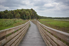 Myakka River State Park Royalty Free Stock Images