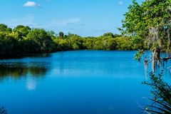 A Warm Spring Afternoon in Southwest Florida. The Myakka river on a warm spring afternoon in southwest Florida stock photo