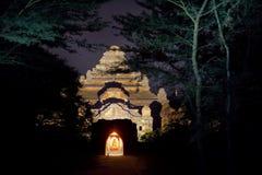 myanmar Виски Bagan на ноче Стоковое Изображение