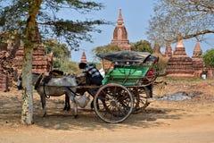 Myanmar Bagan TempleStupa Arkivbild