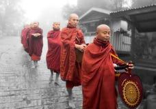 Myanmar Buddhist monks Stock Images