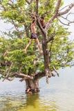 Myanmar 26 de agosto de 2014: Los niños de Myanmar saltaban Imagen de archivo libre de regalías