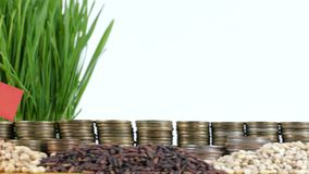Myanmar flag waving with stack of money coins and piles of wheat. And rice seeds stock footage