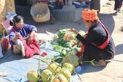 Myanmar Inle湖看法  库存图片
