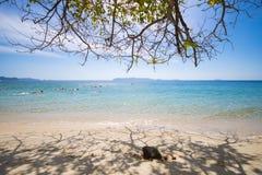 MYANMAR - JANUARY 11, 2016 : Tourists snorkeling in Ta Fook isla Stock Photos